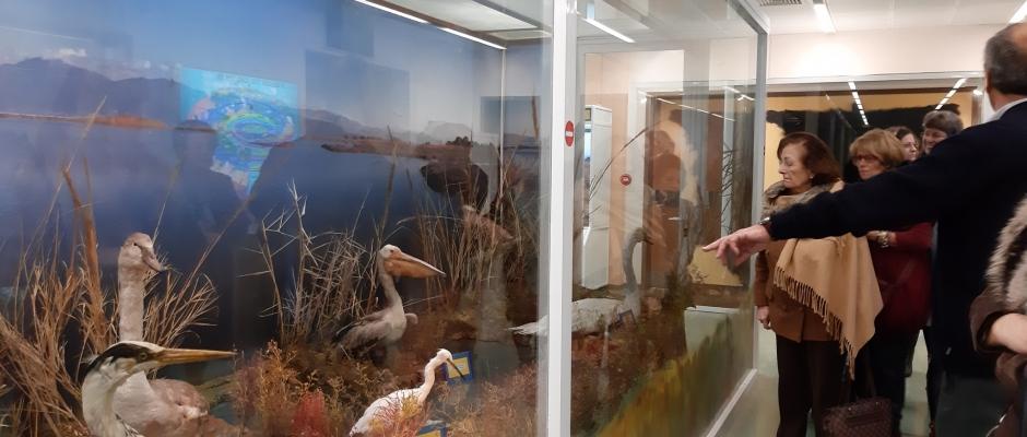 Ζωολογικό Μουσείο Πανεπιστημίου Πατρών
